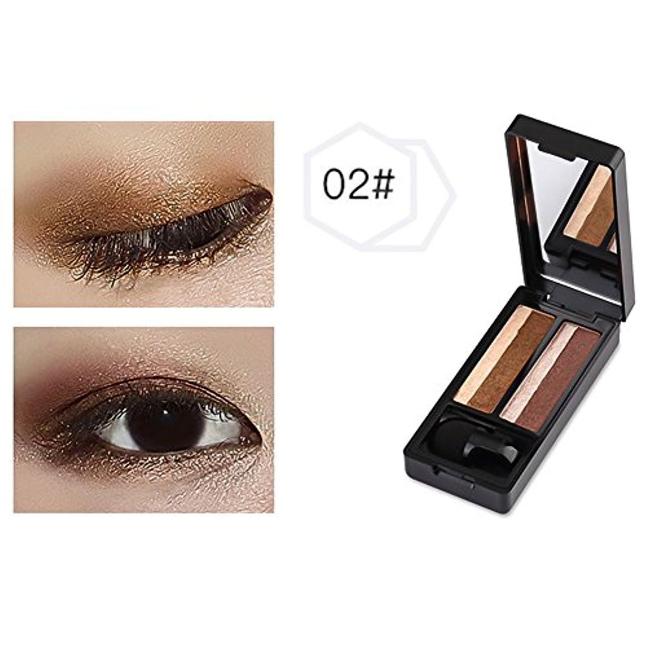 TerGOOSE スキンモデリングアイズ 人気2色アイシャドウ パレット 眼影02 極め細かい 4.4g