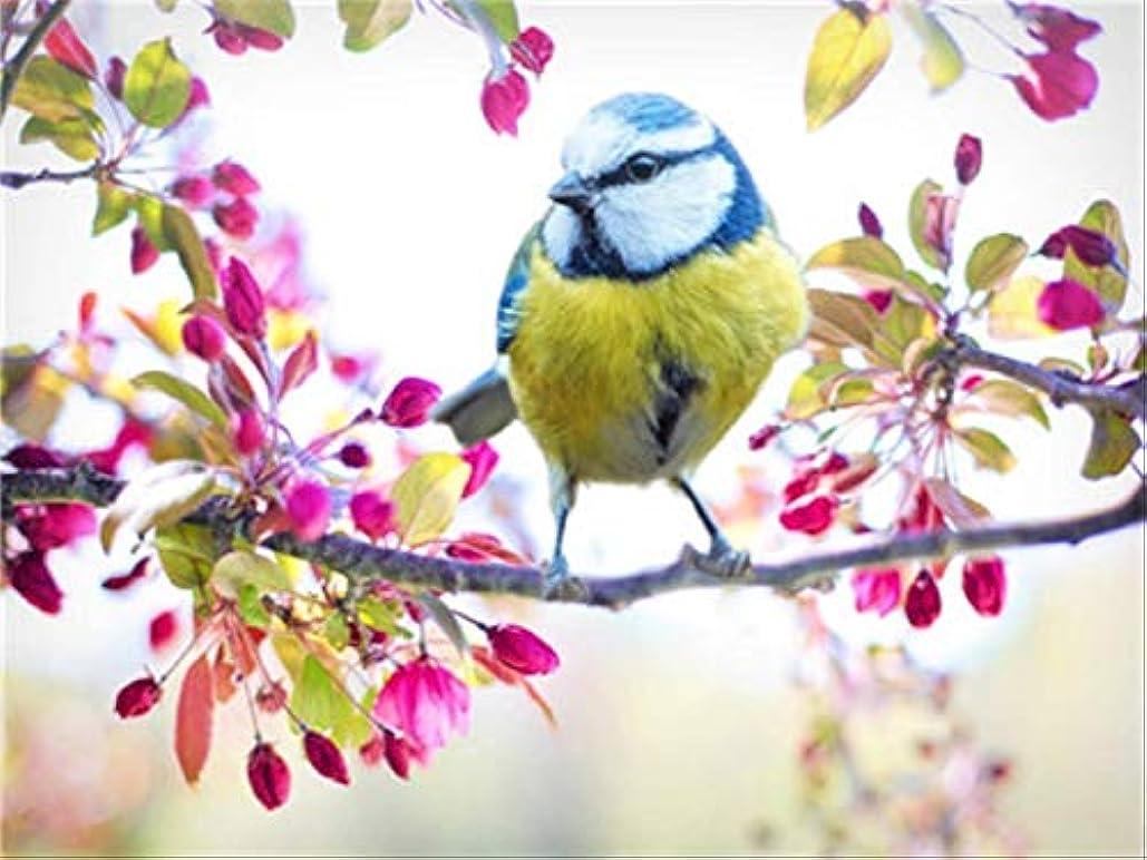 キャスト情報リー番号キットによるDIYの油絵ペイント鳥の枝キャンバスアートホームリビングルームは子供のために飾る大人の学生ギフト40x50cmのブラシ付きフレーム