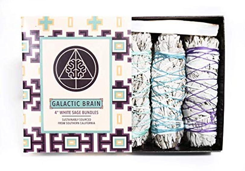 アリス撤退可能性GalacticBrain 4インチ カリフォルニアホワイトセージスマッジバンドル/スマッジスティックキット ご自宅をきれいにしましょう。 瞑想/ヨガの練習を強化。 振動を上げましょう。 パロサントスティック 2本 セレナイトクリスタル