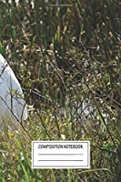 """Notebook: Stork At Viera Wetlands , Journal for Writing, Size 6"""" x 9"""", 164 Pages"""