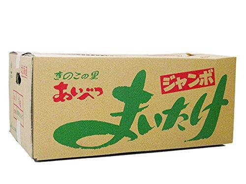 ジャンボまいたけ2株合計1kg以上 北海道愛別町産 きのこの里あいべつの舞茸 特産品のマイタケ 大株 肉厚なキノコ 舞出す程美味しい茸 (黒舞茸) ダイエットに注目されている黒マイタケ -
