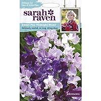 【輸入種子】 Johnsons Seeds Sarah Raven Brilliant for Bees & Butterflies Sweet Pea Midnight Blues サラ・レイブン スイート・ピー ミッドナイト・ブルース ジョンソンズシード