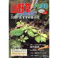 山野草とミニ盆栽 2008年 03月号 [雑誌]
