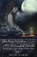 Healing Wisdom for a Wounded World: My Life-Changing Journey Through a Shamanic School (Book 1)