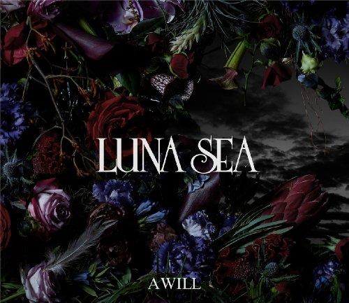 A WILL(初回限定盤B)(DVD付)