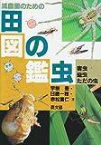 減農薬のための田の虫図鑑―害虫・益虫・ただの虫