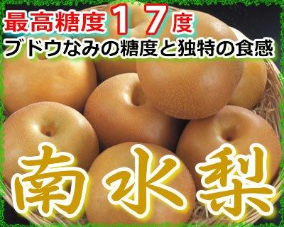最高糖度17度 ブドウなみの甘さと独特の食感 長野産南水梨 贈答用秀品 大玉10〜12個 約5kg入