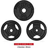 Meteor Cast Iron Triple Grip Standard Weight Plate 26.5mm Hole Fitness Gym Weightlifting Dumbbell Body 1.25/2.5/5KG