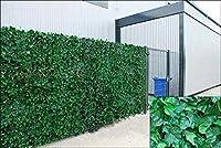 アイビー人工スクリーニングリーフヘッジパネルオンロールプライバシーガーデンフェンス、グリーン、1.0mx 3m