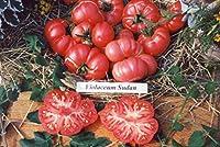 【SEED】Heirloom Tomato® Violaceum Sudan=Sudan Black エアルーム・トマト・ヴィオラケウム・スーダン(15 seeds)P