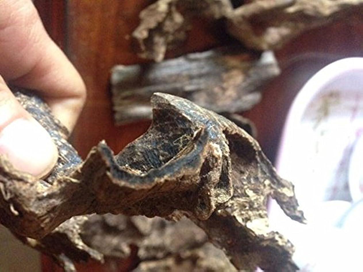 ムスオーチャード常習者20グラムベトナム自然Sinkable Oud伽羅Aloeswoodチップ