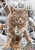 ワル猫だもの (SUN MAGAZINE MOOK)