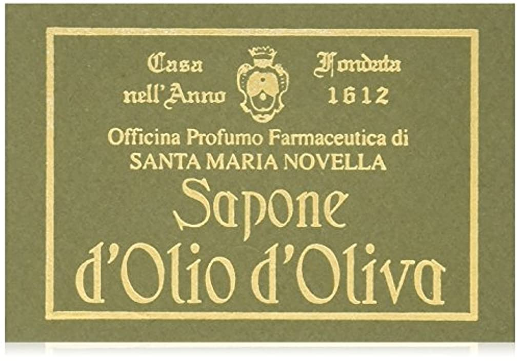 ストロー名誉農学サンタマリアノヴェッラ OVオイルソープ 100g [並行輸入品]