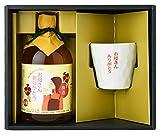 母の日ギフト・誕生日プレゼント 梅酒早春・オリジナルグラスセット メッセージカード付き