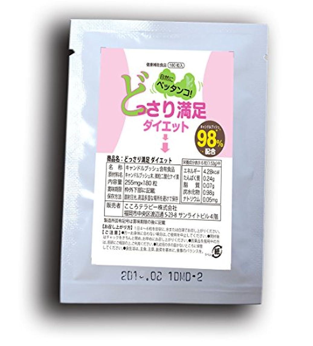 キャベツジョグベーコン【お試し】どっさり満足ダイエット(1袋:12粒)3日分