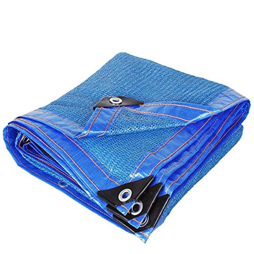 ロデオ取り除くペルメルSHIJINHAO オーニングシェード遮光ネット 日焼け止め 影 カバー パーゴラ 編み物 丈夫 グロメット ハングしやすい ポリエステル、17サイズ (Color : Blue, Size : 3x5m)