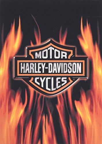 HARLEY-DAVIDSONハーレーダビッドソン トランプ フレイム