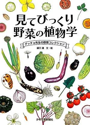 見てびっくり野菜の植物学―ゲッチョ先生の野菜コレクションの詳細を見る