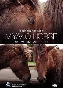 沖縄県指定天然記念物・宮古馬の一日 [DVD]