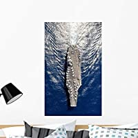 Wallmonkeys Aerial Aircraft Carrier Uss Wall Mural Peel and Stick Graphic (36 in H x 22 in W) WM328293 [並行輸入品]