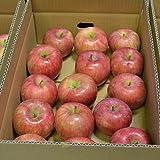 山形産 つがる りんご 5kg 約20玉前後 訳あり ご家庭用