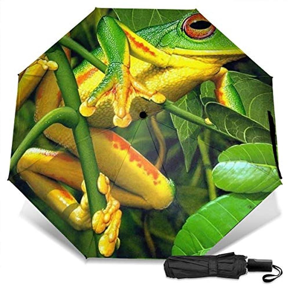 独裁花火ケーキ熱帯雨林の鮮やかな木のカエル折りたたみ傘 軽量 手動三つ折り傘 日傘 耐風撥水 晴雨兼用 遮光遮熱 紫外線対策 携帯用かさ 出張旅行通勤 女性と男性用 (黒ゴム)