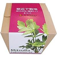 窓辺で栽培 虫のわかない栽培キット クリスタルグレイン「ミツバ」 (1)