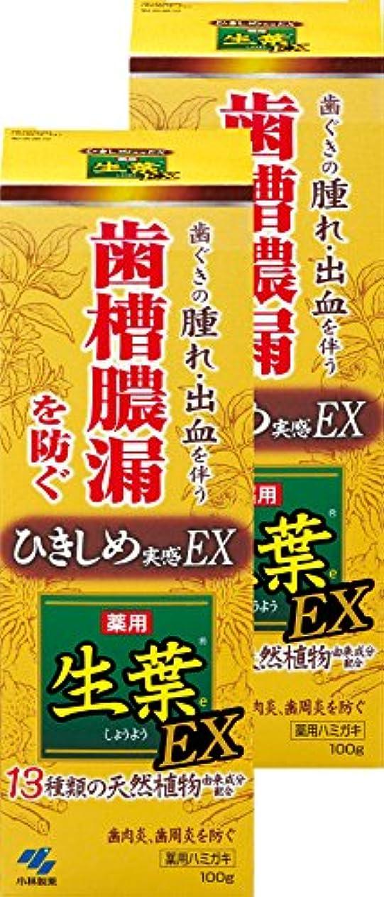 【まとめ買い】生葉EX(しょうようEX) 歯槽膿漏を防ぐ 薬用ハミガキ ハーブミント味 100g ×2個(リーフレット付き) 【医薬部外品】