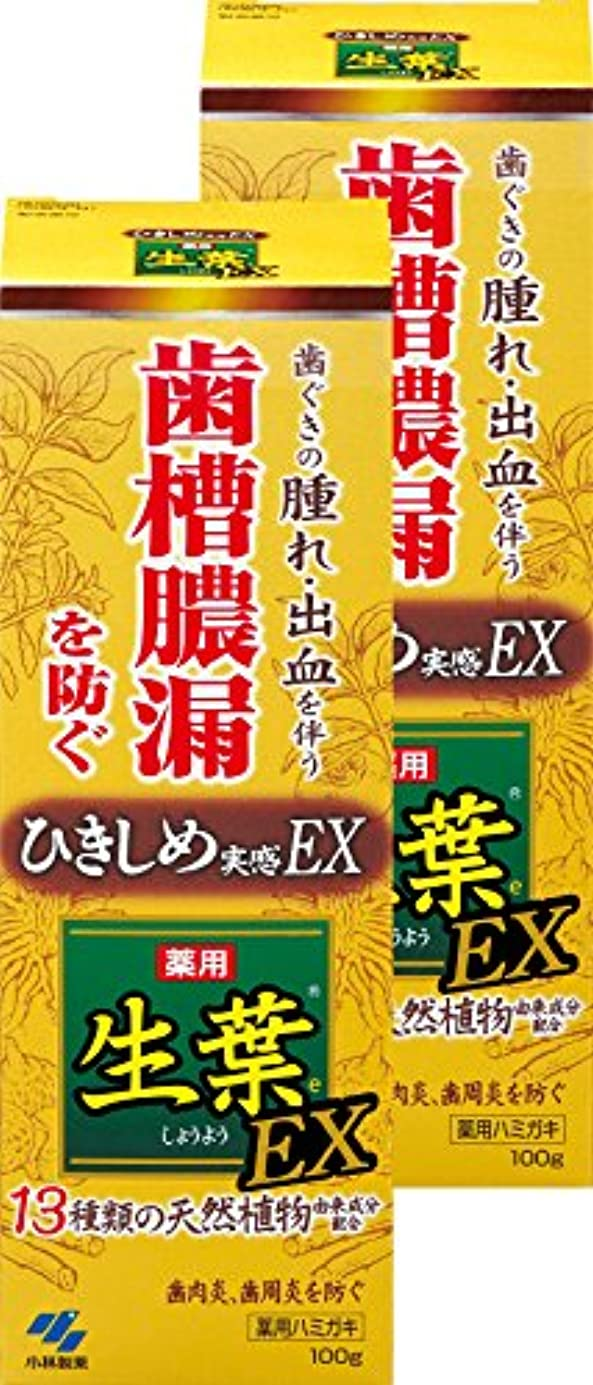 とは異なり期待する強度【まとめ買い】生葉EX(しょうようEX) 歯槽膿漏を防ぐ 薬用ハミガキ ハーブミント味 100g ×2個(リーフレット付き) 【医薬部外品】