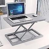 YD ノートパソコンスタンド ノートブックスタンド - 炭素鋼/環境プレート、マルチギア調整、オフィススタンドスタンドワークベンチ折りたたみリフティングノートブックスタンド - 3色から選択可能 /& (色 : Gray)