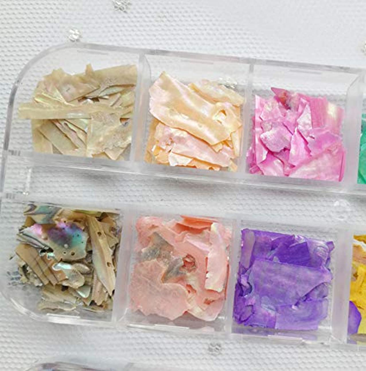 容赦ない用心深いおかしいシェルフレーク 夏ネイル用 貝殻片 ネイルアート ネイルパーツ ネイルアクセサリー 天然 可愛い カラー 超薄 12色/セット ケース付き
