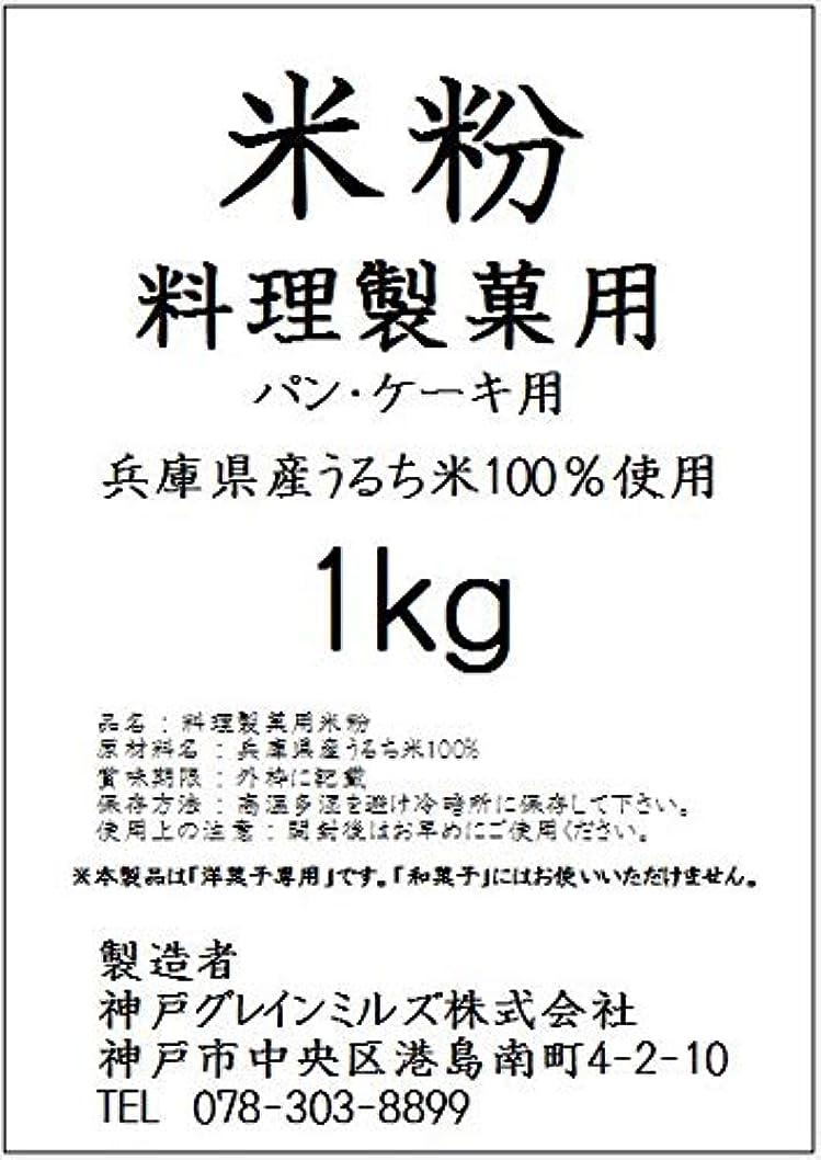 カヌー肺ライド【業務用】パン?ケーキ用 米粉(洋菓子専用)【国内産】 (1kg)
