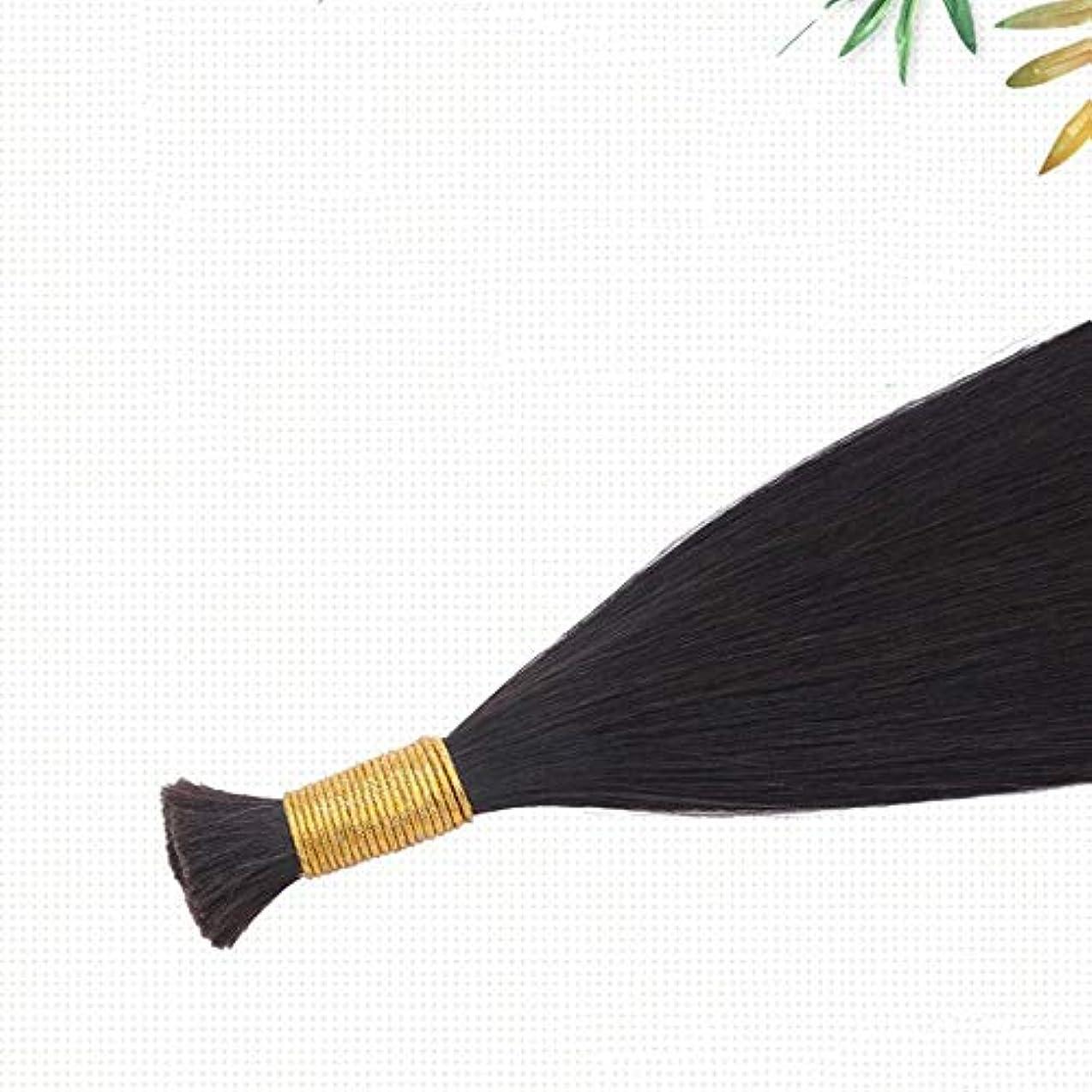 糞虫を数える稚魚JULYTER ナノリングヘアエクステンション100%存在する人間の髪の毛マイクロナノ50G /フリーリングは含まれています(生物学的色) (色 : Natural color, サイズ : 70cm)