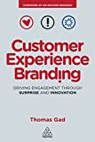 Customer Experience Branding: Driving Engagement Through Surprise and Innovation (English Edition) 画像