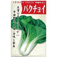 ちんげん菜 種 【 パクチョイ 】 種子 小袋(約10ml)