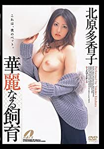華麗なる飼育 北原多香子 [DVD]