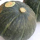 北海道のほこほこかぼちゃ,8月後半から季節限定販売