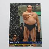 BBM2017インフィニティ/INFINITY■レギュラーカード■055/稀勢の里寛/大相撲