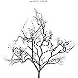 STAY ALIVE(初回生産限定盤)(DVD付)