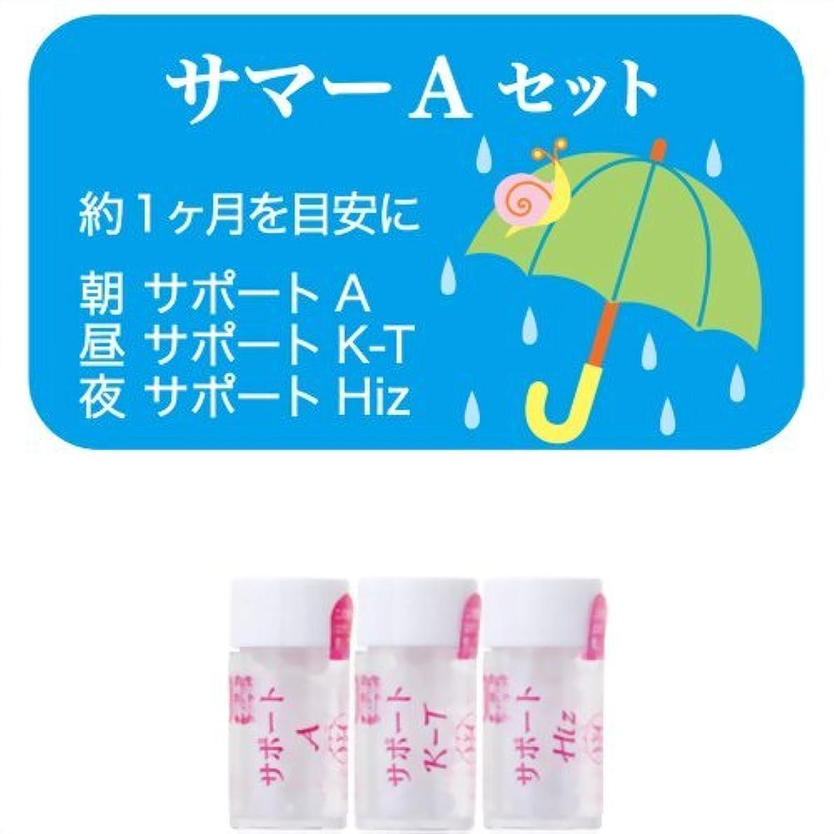励起カウント地殻ホメオパシージャパンレメディー サマーAセット