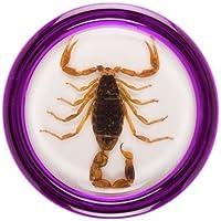 Razor Pocket Pros Yo-Yo Stinger Blonde Scorpion/Purple Shell by Razor US [並行輸入品]
