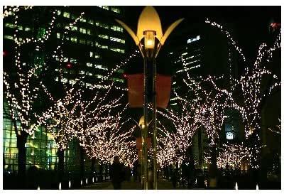 ポストカード「兵庫県神戸ハーバーランド・クリスマスイルミネーション」Postcard-絵はがきハガキ葉書