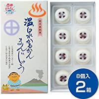 財宝 温泉 かるかん 饅頭 16個 (8個入×2箱)