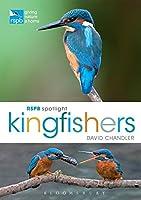 Kingfishers (RSPB Spotlight)