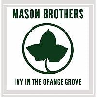 Ivy in the Orange Grove
