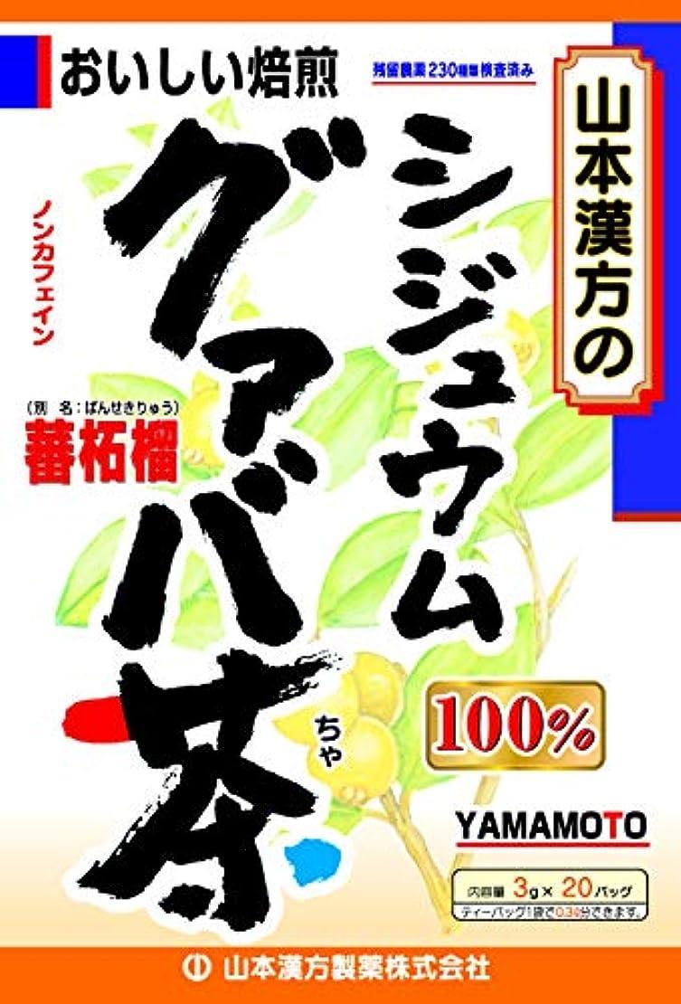 相談研磨剤賃金山本漢方製薬 シジュウムグァバ茶100% 3gX20H