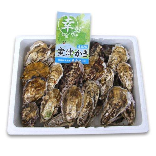 室津牡蠣 殻付き牡蠣2kg 漁師直送!朝取れ牡蠣 【幸永丸水産】 かき カキ 牡蠣