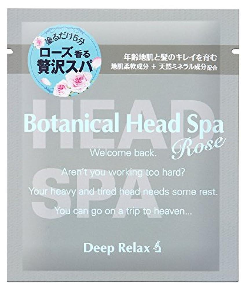 効能不足回転する髪質改善研究所 ボタニカルヘッドスパローズT 30g