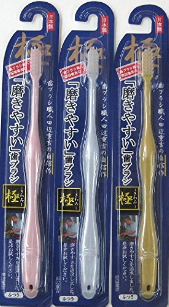 偏差救急車肝歯ブラシ職人 田辺重吉の磨きやすい歯ブラシ 極 LT-09(12本入)