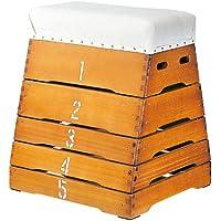 跳び箱 5段とび箱 シックハウス対応 富士型跳び箱